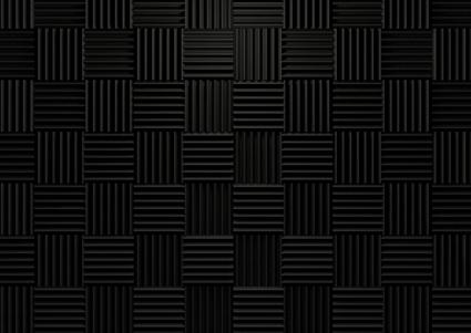 SSP_2011.jpg